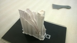 Lots of scaffold, but all the bones are in position and printed fine